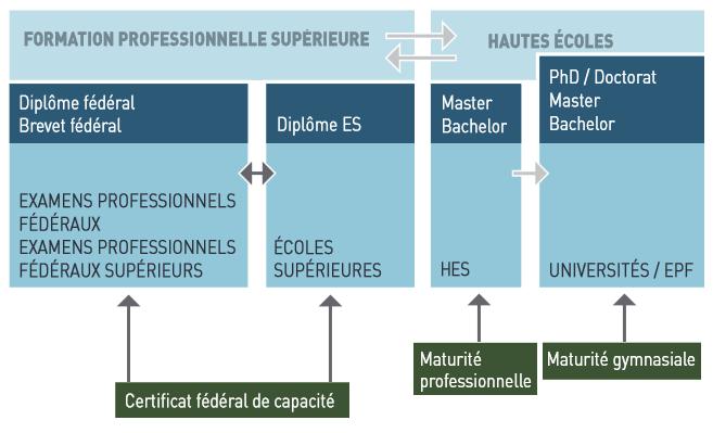 Le-brevet-federal-dans-le-systeme-de-formation-suisse-version-simplifiee